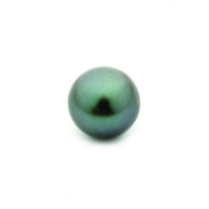 Enchantables Smooth Tahitian Pearl (Dark Grey)