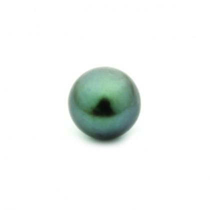 Enchantables Smooth Tahitian Pearl (Dark Grey)